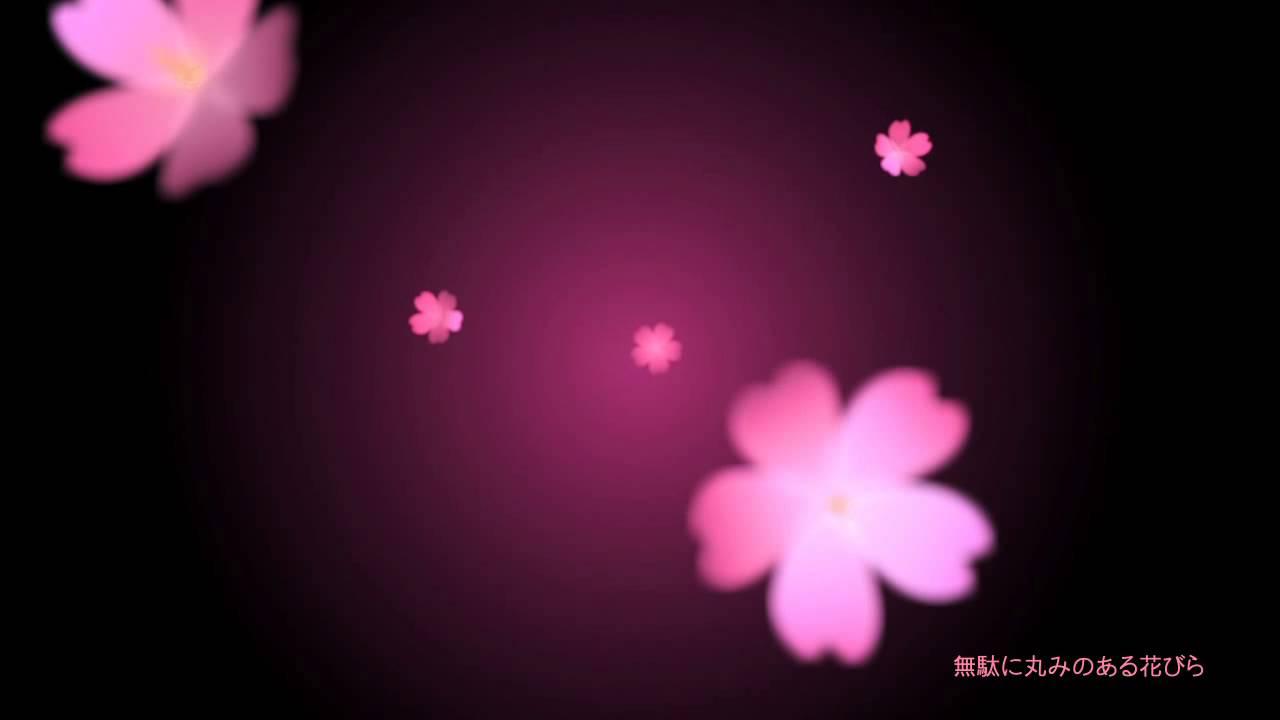 【AfterEffects】平面にならない桜の花びらと丸みのある桜の花【aep配布】